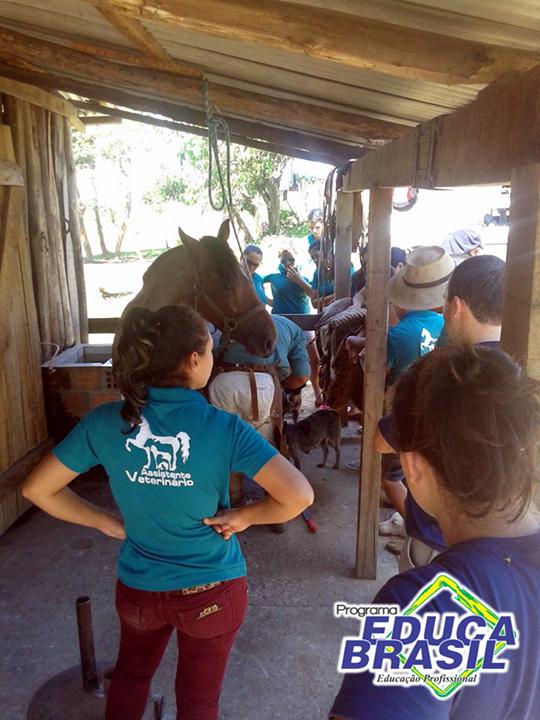 Visita Técnica | Curso de Assistente Veterinário | Itaqui/RS
