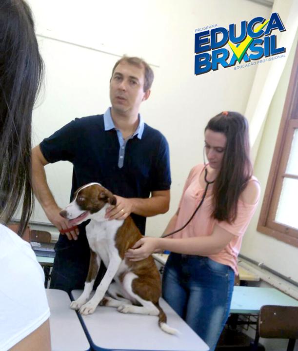 Aula experimental com alunos do Curso de  Assistente Veterinário de Santo Ângelo/RS