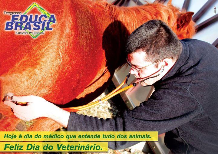 Bem-estar animal, saúde pública, defes